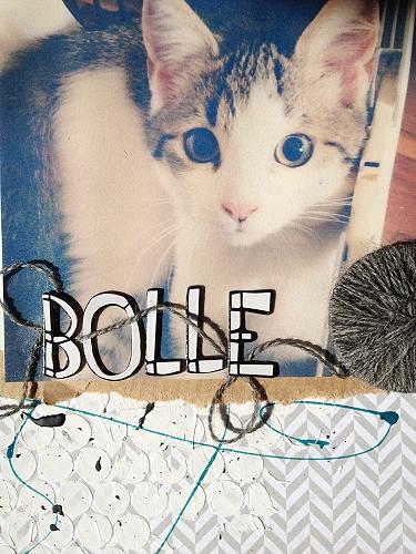 bolle8