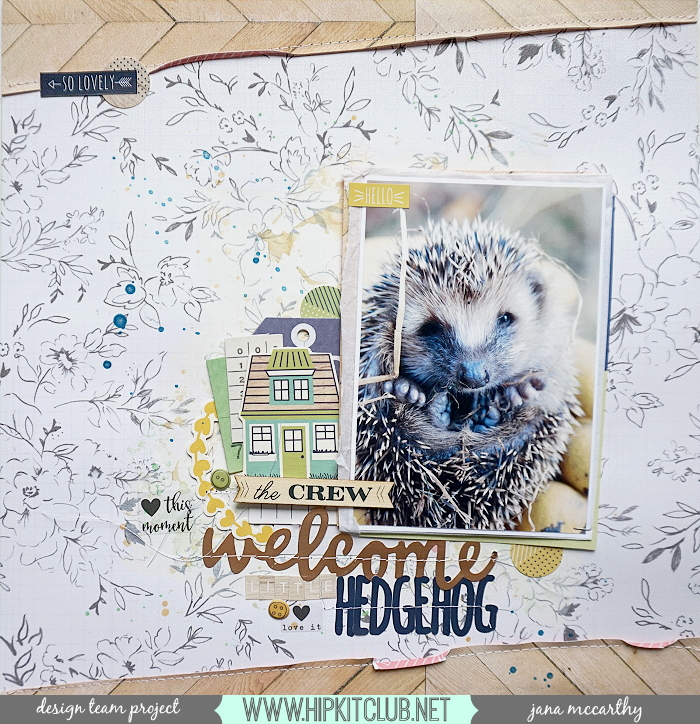 welcomehedgehog
